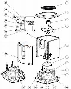 Hayward H250 Pool Heater Wiring Diagram
