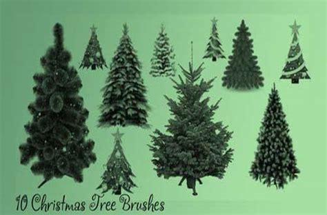 high quality tree brushes  photoshop designbeep