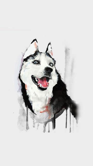 fondos de pantalla de perros foto de hermosos canes
