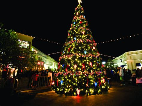 christmas trees jacksonville fl best things to do in ta for the holidays this year 9186