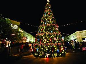 Best Things To Do In Tampa For The Holidays This Year