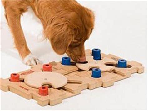 intelligenzspielzeug fuer hunde von nina ottoson