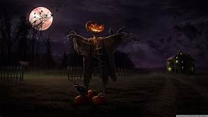 Halloween Hd Wallpapers – Festival Collections