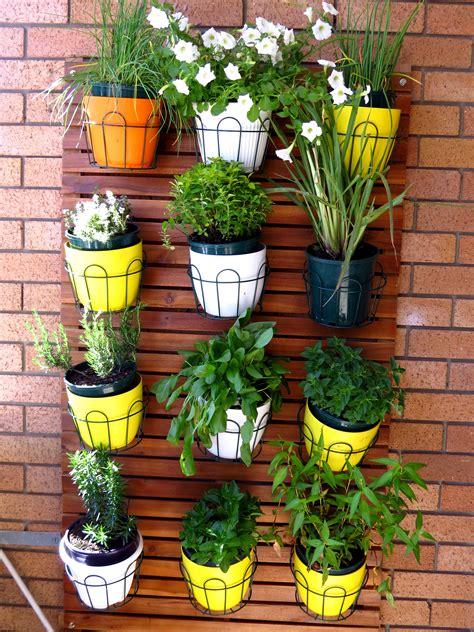 best trees to plant in garden what plants grow best on a balcony garden myproductivebackyard