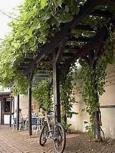 Pergola Mit Wein Bepflanzen : diy step by step handmade wood trellis for grapevines tutorial gardens yards and backyard ~ Eleganceandgraceweddings.com Haus und Dekorationen