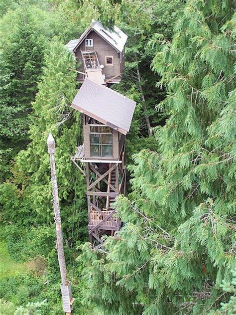 World's Most Extreme Tree Houses Techeblog