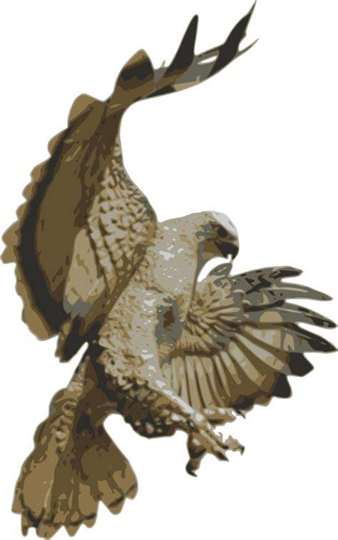 onlinelabels clip art hawk pouncing