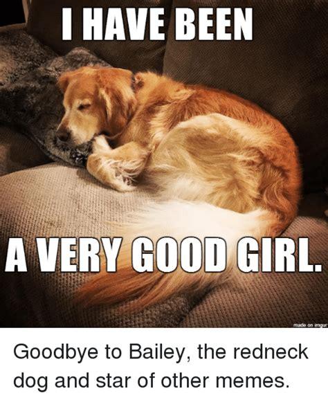 A Good Woman Meme - 25 best memes about redneck dog redneck dog memes