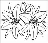 Coloring Flowers Lily Coloritbynumbers Printables Flower Pages Printable Lilies Paint Number Easy Adults Simple Numbers Stencil Colors Difficult Colorbynumbers sketch template
