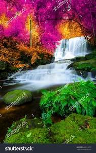 Beautiful, Amazing, Waterfall, Colorful, Autumn, Forest, Stock
