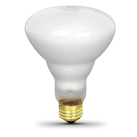 65 watt incandescent br30 feit electric