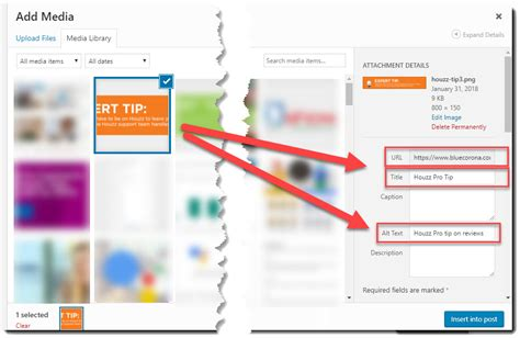 Alt Image Tag Image Seo Alt Tags Title Tags And Everything In Between