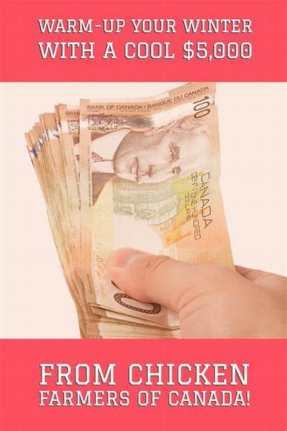Cash Win Canadiansavers Contest Pay