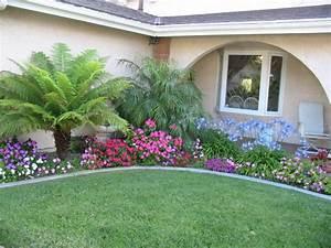 Schattenpflanzen In Prachtvollen Farben Fr Einen