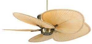 fansunlimited com fanimation treventi ceiling fan