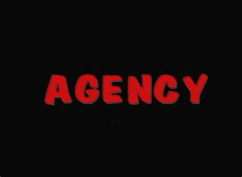 bureau definition explain agency and how agency can be organized and also