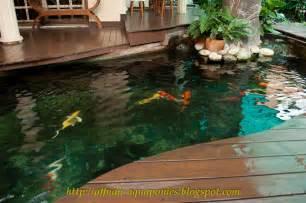 Aquaponics-Pond