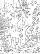 Paradise Coloring Pages Jungle Wild Into Books Lorna sketch template