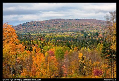 picturephoto northern forest landscape  autumn maine usa