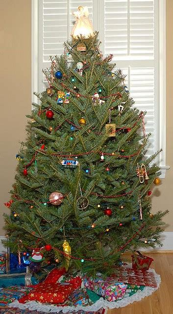 care tips for a live christmas tree garden pics and tips