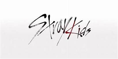 Stray Know Introduction Logos