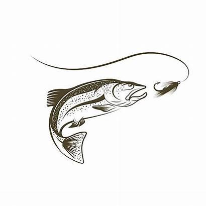 Salmon Jumping Sockeye Vector Illustrations Lure Illustration