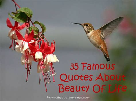 35 Famous Quotes About Beauty Of Life