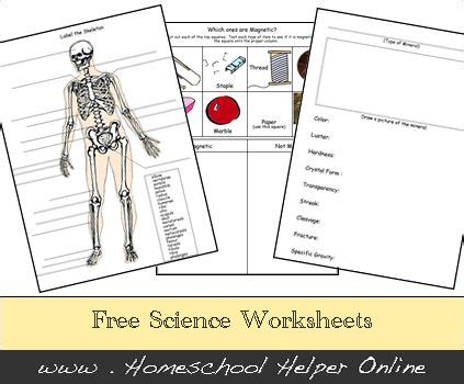 free homeschool science worksheets http homeschoolhelperonline com worksheets science