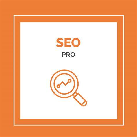 Seo Professional by Posicionamiento Seo Pro Dise 241 O Web Marketing En