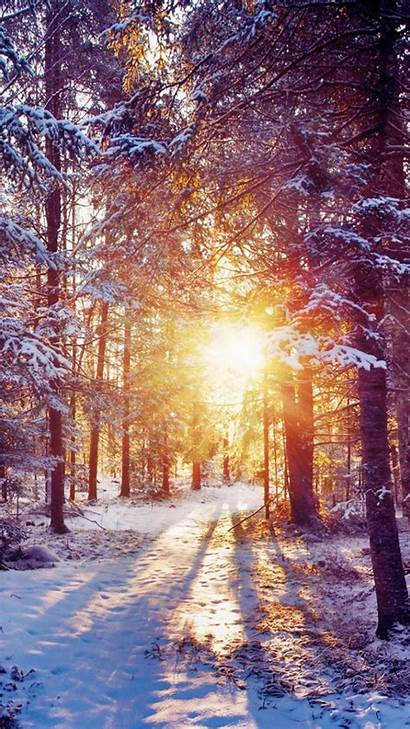 Winter Iphone Wallpapers Background