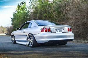 Beautiful SN95 Mustang GT | Ford mustang shelby cobra, Sn95 mustang, Mustang