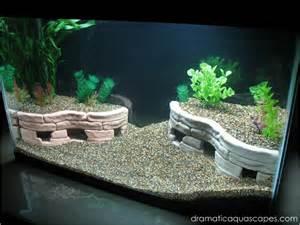 dramatic aquascapes diy aquarium decore terraces