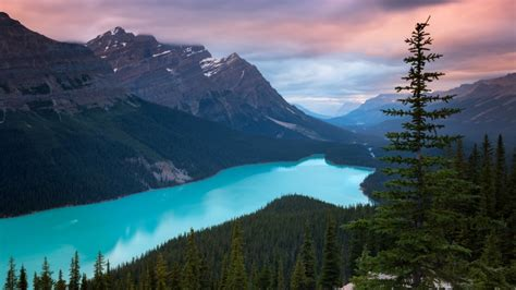 canada lake peyto nature hd wallpapers hdwallpapers funny tv