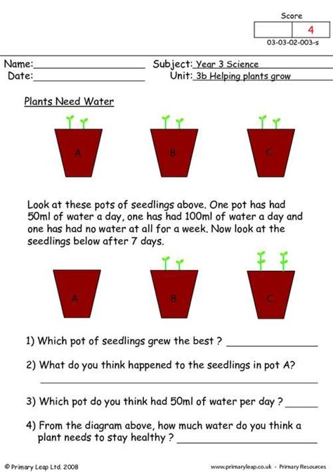 primaryleapcouk plants  water worksheet plant