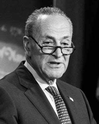 fake sexual harassment story  chuck schumer attempted