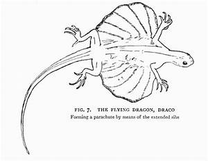 The Project Gutenberg Ebook Of Dragons Of The Air  By H  G