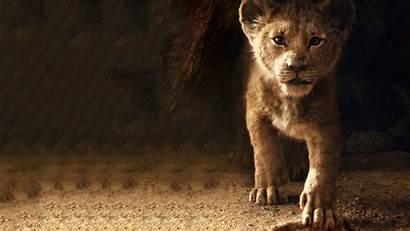 Lion King Simba 4k Wallpapers Disney Movies