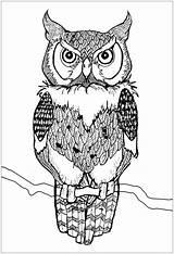 Owl Coloring Owls Colorare Colorear Disegni Gufi Adults Hibou Adulti Mandala Animals Buhos Eulen Gufo Erwachsene Tiere Piercing Hiboux Coloriage sketch template