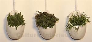 Plante Suspendue Intérieur : plante suspendue pot blanc avec cactus d coration v g tale d 39 int rieur ~ Teatrodelosmanantiales.com Idées de Décoration
