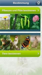 Natur Erleben App Natur Erleben Beobachten Verstehen