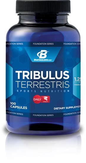 suplemen testosteron tribulus fitness friend club