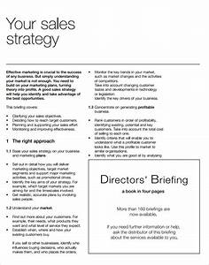 strategic sales plan templates 8 free sample example With salesperson business plan template