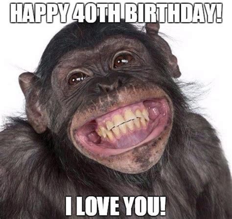 Chimp Meme - 40th birthday memes wishesgreeting