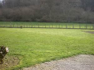 Tondre La Pelouse Sans Ramasser : dom 39 easy r alisations tonte de pelouse sans ramassage de l 39 herbe cessieu la tour du pin ~ Melissatoandfro.com Idées de Décoration