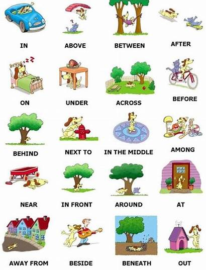 Preposition Prepositions Grammar Learn Dog Between English