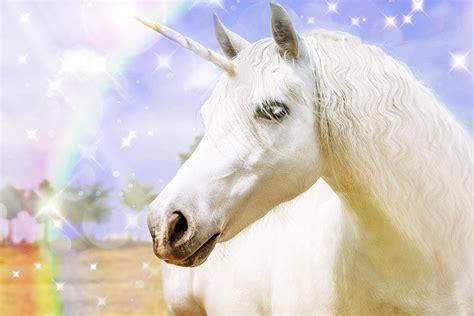 top  unicorns       executive grapevine