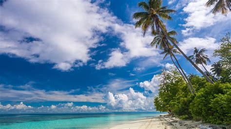 tropical paradise  sabah southeast asia malaysia ocean