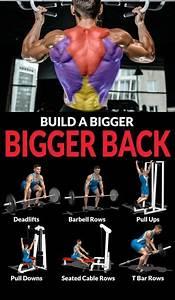 Tutorial Back Workout  Ud83d Udc47 U0026 Guide - Weighteasyloss Com