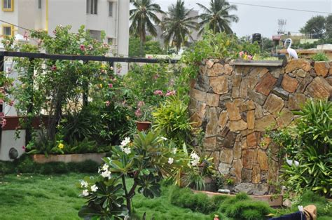 Idea For Small Kitchen - your view here is how you can create a tiny organic farm on your terrace the better india