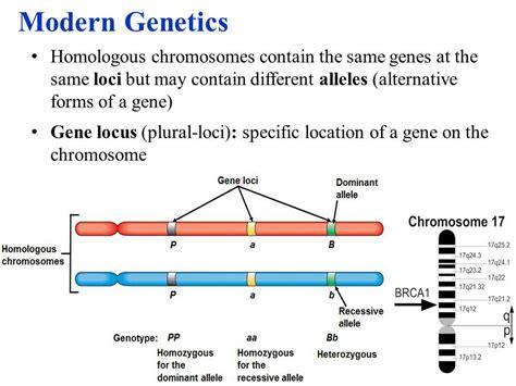 of modern genetics patterns of inheritance ppt